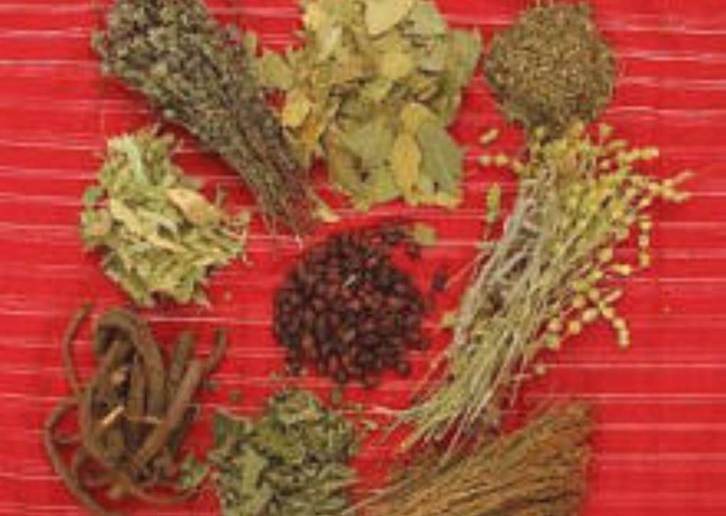 HERBAL MEDICINE HAS A FUTURE - Dr Abgeve